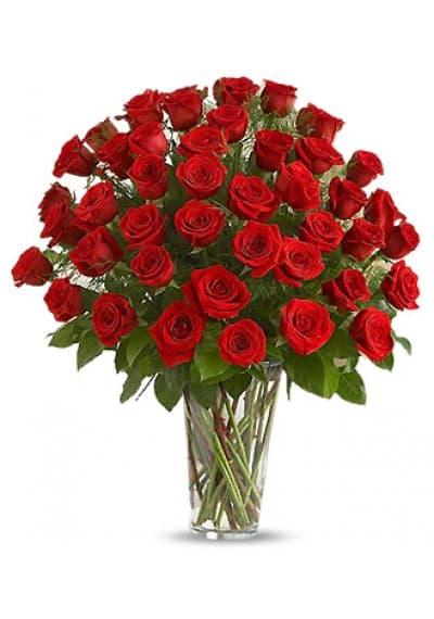50 Long Stem Red Rose