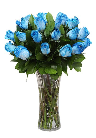 Pure Royal Blue