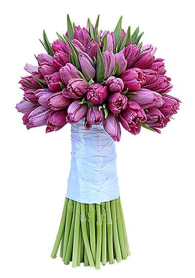 Purple Tulips in Hand Tied