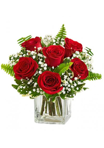 Love Embrace Red Roses