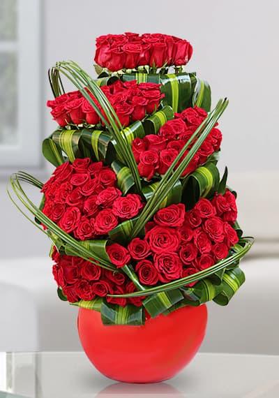 100 Love Rose