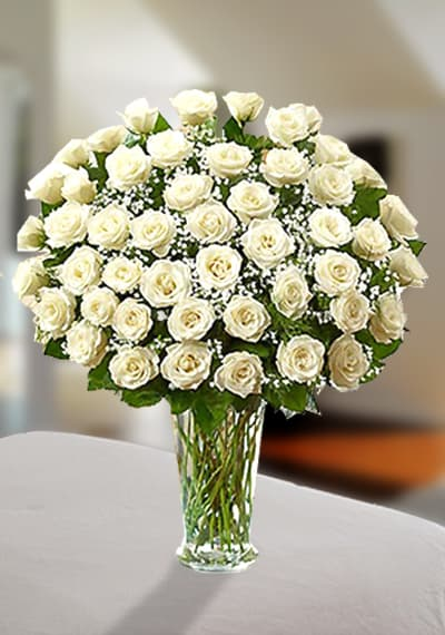 Peaceful Premium White Roses