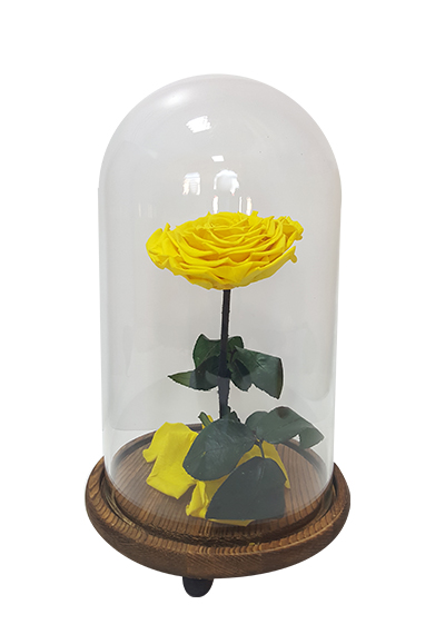 Preserved Rose - Yellow