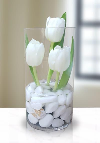 3 Tulips in vase
