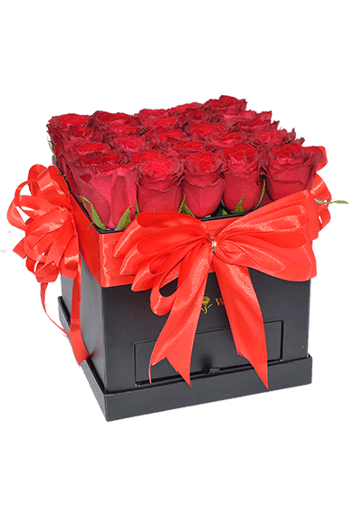 Red Roses in Square Box