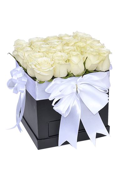White Roses in Square Box