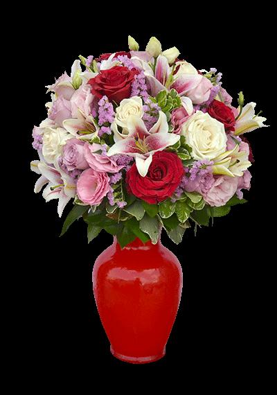 Sensitive Beauty Flower