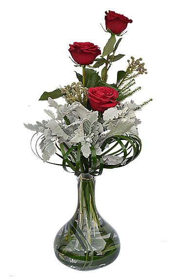 3 Lovely Roses