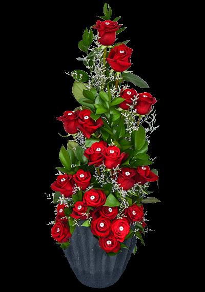 21 Roses With Diamonds