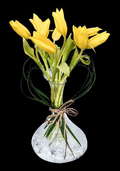 9 Tulips In Vase