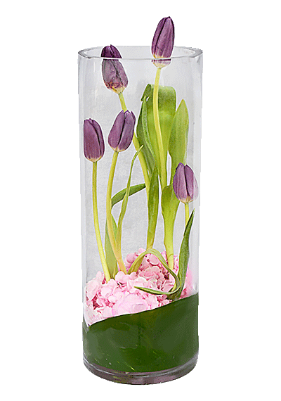 5 Tulips In Vase
