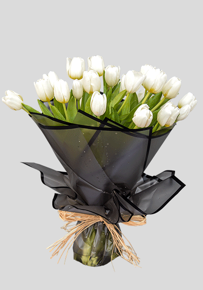 Simply White Tulips