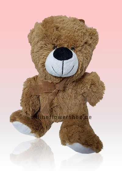Mr Brown Teddy