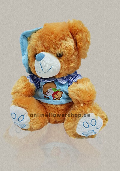Kid Blue Teddy