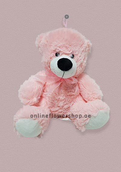 Pink For All Teddy